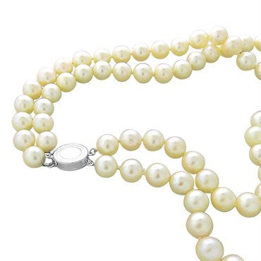 thumbnail image of Estate 14k Gold 8.5mm to 8.75mm Pearl Double Strand Necklace