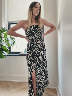 Rheya Zebra Tube Dress
