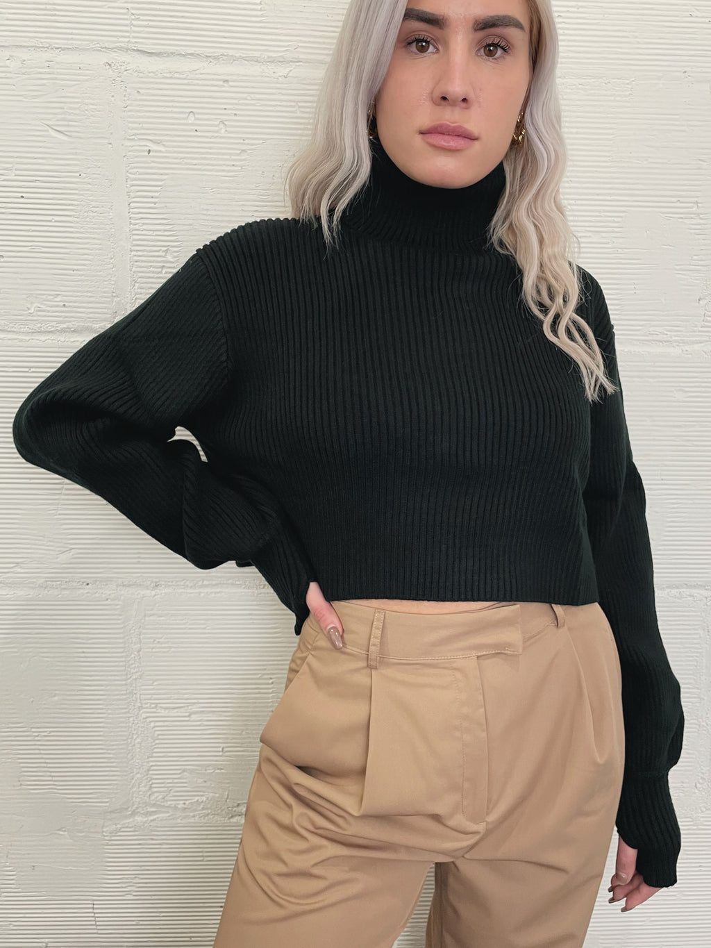 Oasis Crop Turtleneck - Black