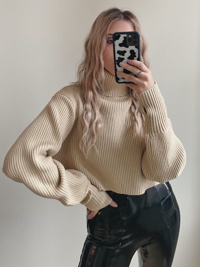 Oasis Crop Turtleneck