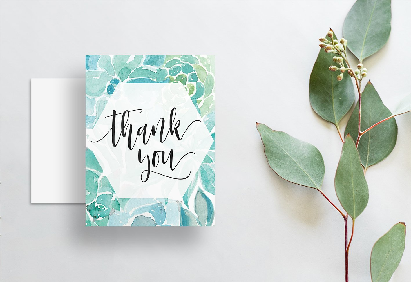 Watercolor Succulent Thank You Cards