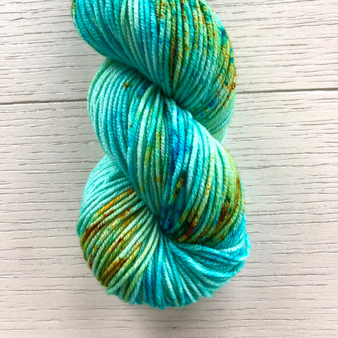 Monthly Colorway- Juicy Worsted August '20 Bayou Beignets