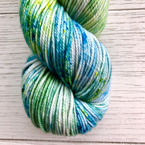 Monthly Colorway- Tasty DK September '19 Juice Box