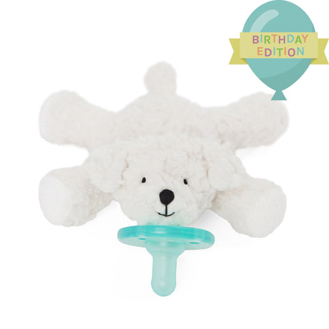 Birthday Bichon WubbaNub - Basically Bows & Bowties