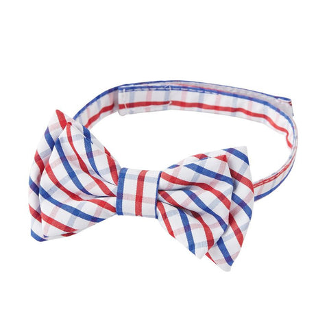 Mud Pie Blue & Red Check Bow Tie