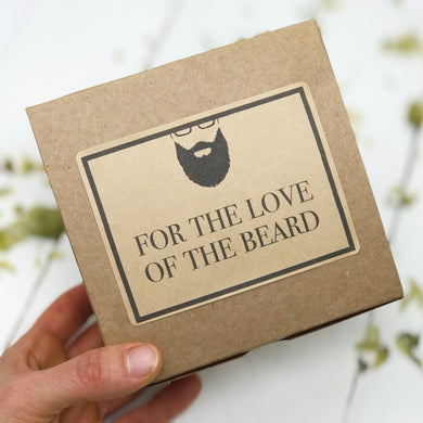 Beard Gift Set - Beard Wash - Beard Oil - Cinnamon Spice - Home Brewed Soaps