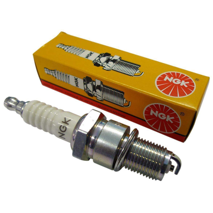 NGK Spark Plugs | Scooter's Powersports