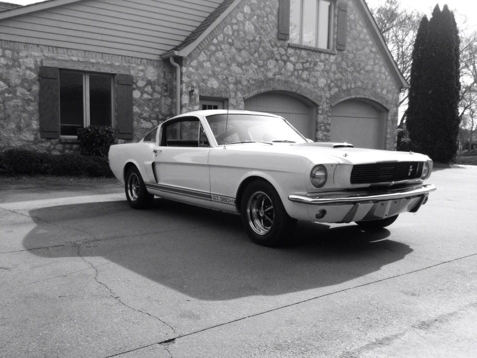 Tom Cotter Mustang