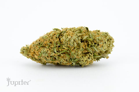 Girl Scout Cookies – Hybrid