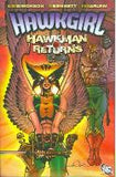 HAWKGIRL HAWKMAN RETURNS TP - Packrat Comics