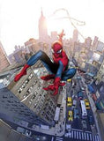 AMAZING SPIDER-MAN #700 COIPEL VAR