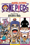 ONE PIECE 3IN1 TP VOL 19