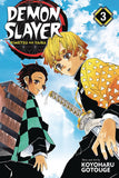 DEMON SLAYER KIMETSU NO YAIBA GN VOL 03 - Packrat Comics