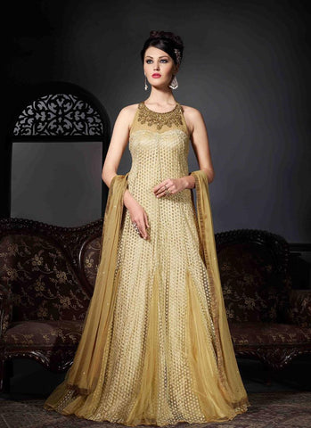 Beige Georgette/Net Handwork Gown