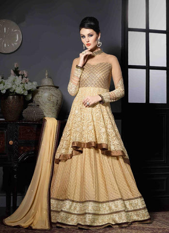 Beige & Brown Georgette/Net Handwork Gown