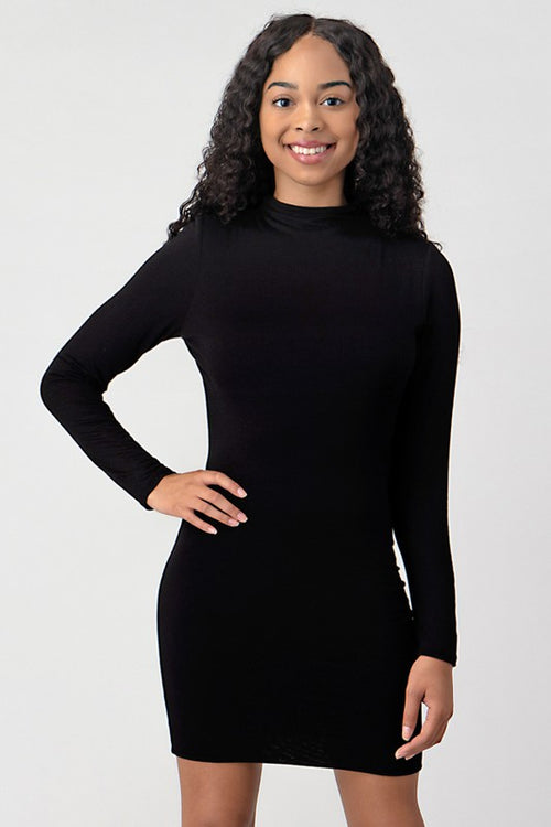 Turtle Neck Double Layer Dress