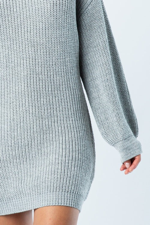 Low Gage Turtle Neck Dress
