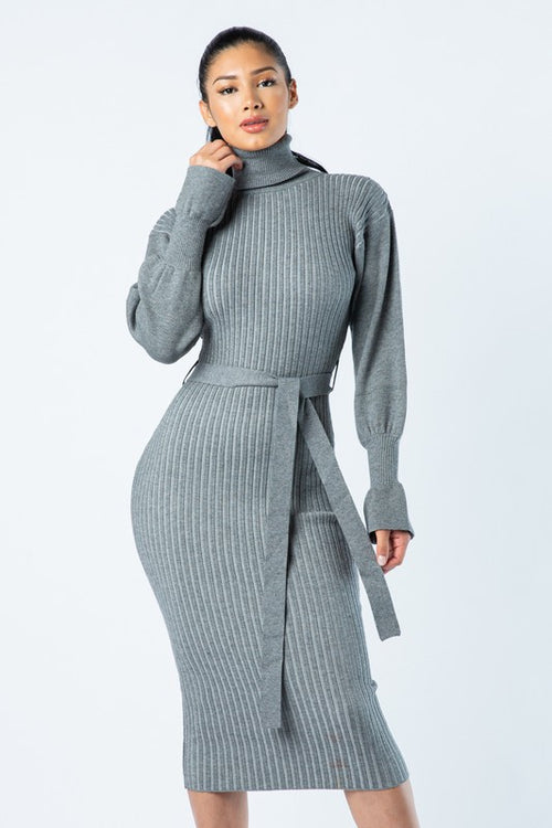 Ribbed Turtle Neck Belted Dress