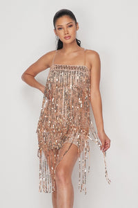 Sequin Fringe Dress
