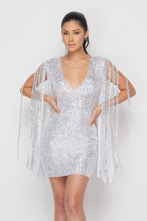 Sequin Dress with Fringe Sleeve