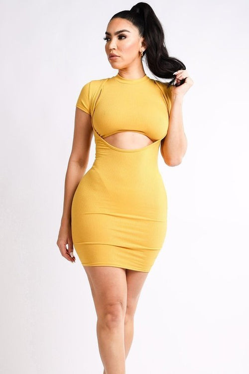 Ribbed Crop Top & Mini Dress