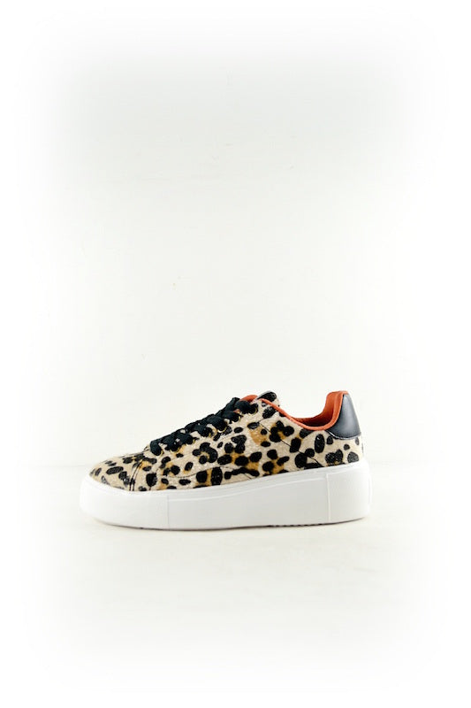 Lace Up Platform Leopard Sneaker