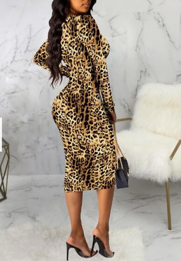 Leopard Deep V Neck Dress