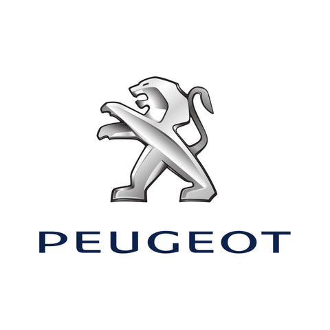 Peugeot - Diesel Power Performance Chip Module (Passenger)