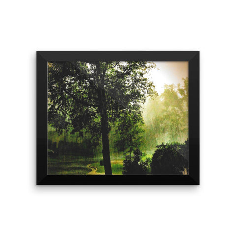 PH Rainy Day Tree Framed photo paper poster