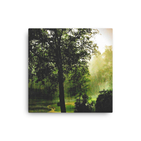 PH Rainy Day Tree Canvas