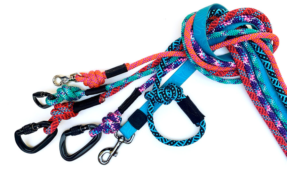 Which leash is best for my dog?