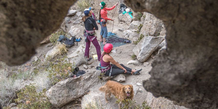 On Belay! The do's and don'ts of dogs at the crag.