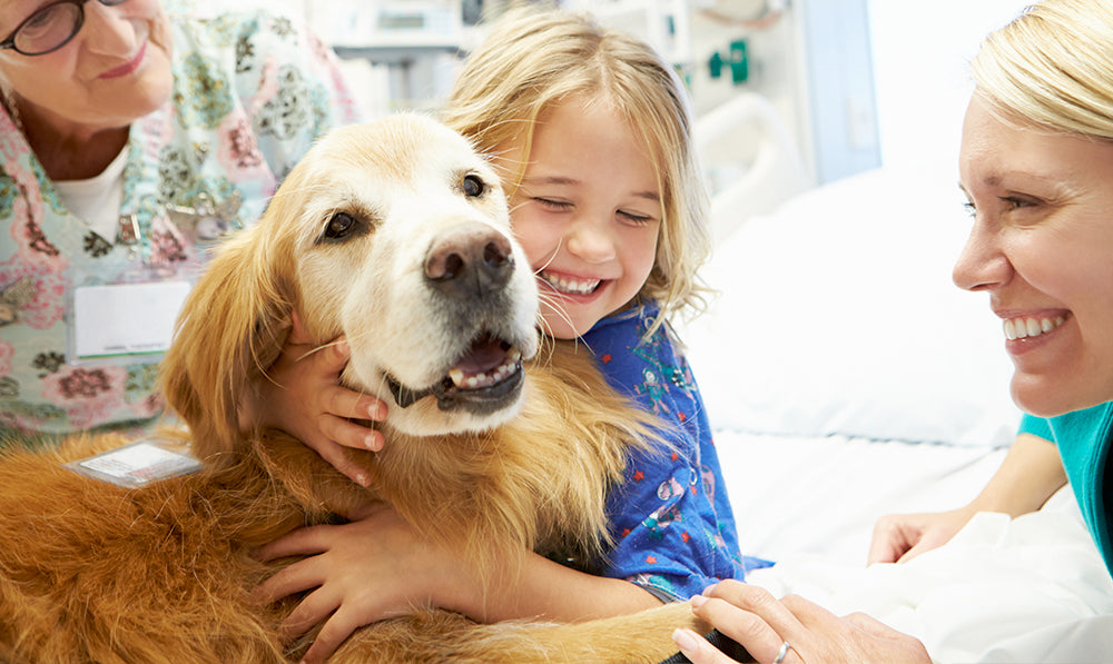 Helping Paws: Therapy + Emotional Support Dogs