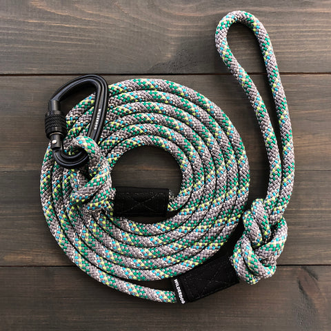 Alpine Reflective Leash