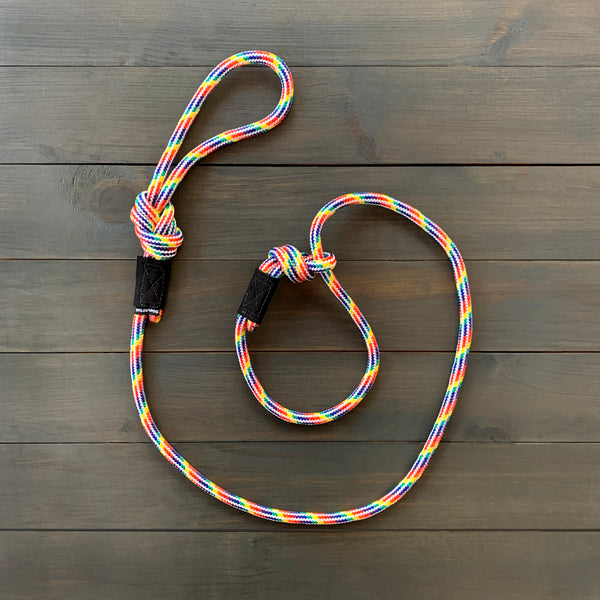 Rainbow Slip Lead