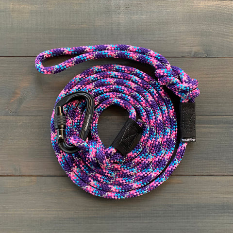 Razzleberry Reflective Leash