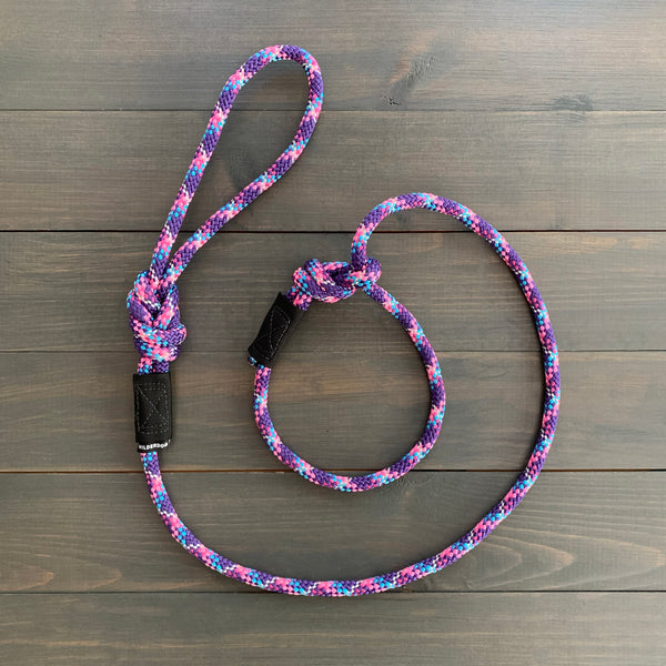 Razzleberry Reflective Slip Lead