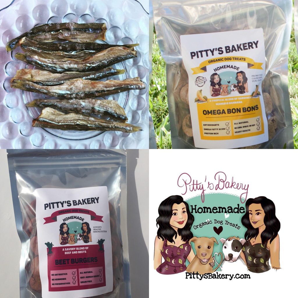 Pitty's Bully Bundle  | The Perfect Gift for the Dog Mom in your life