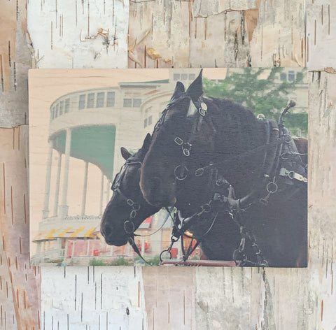Grand Horses 5X7 By Kate Rise