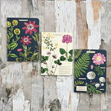 Mini Notebooks Cavallini