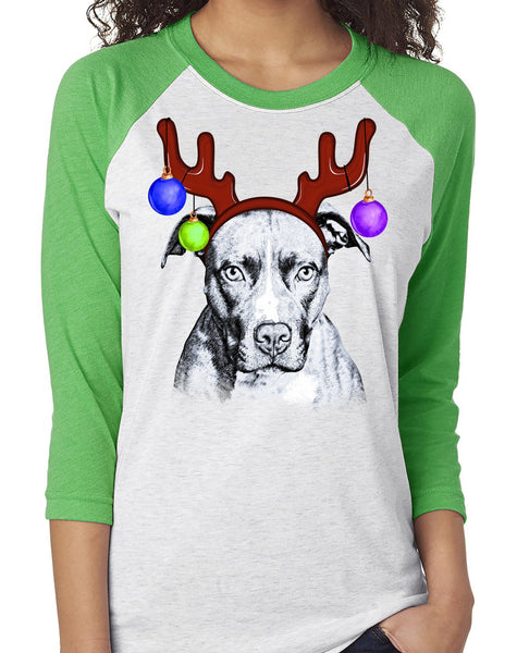 FUN REINDEER PIT BULL RAGLAN TEE - UP TO 3XL - 3 COLORS