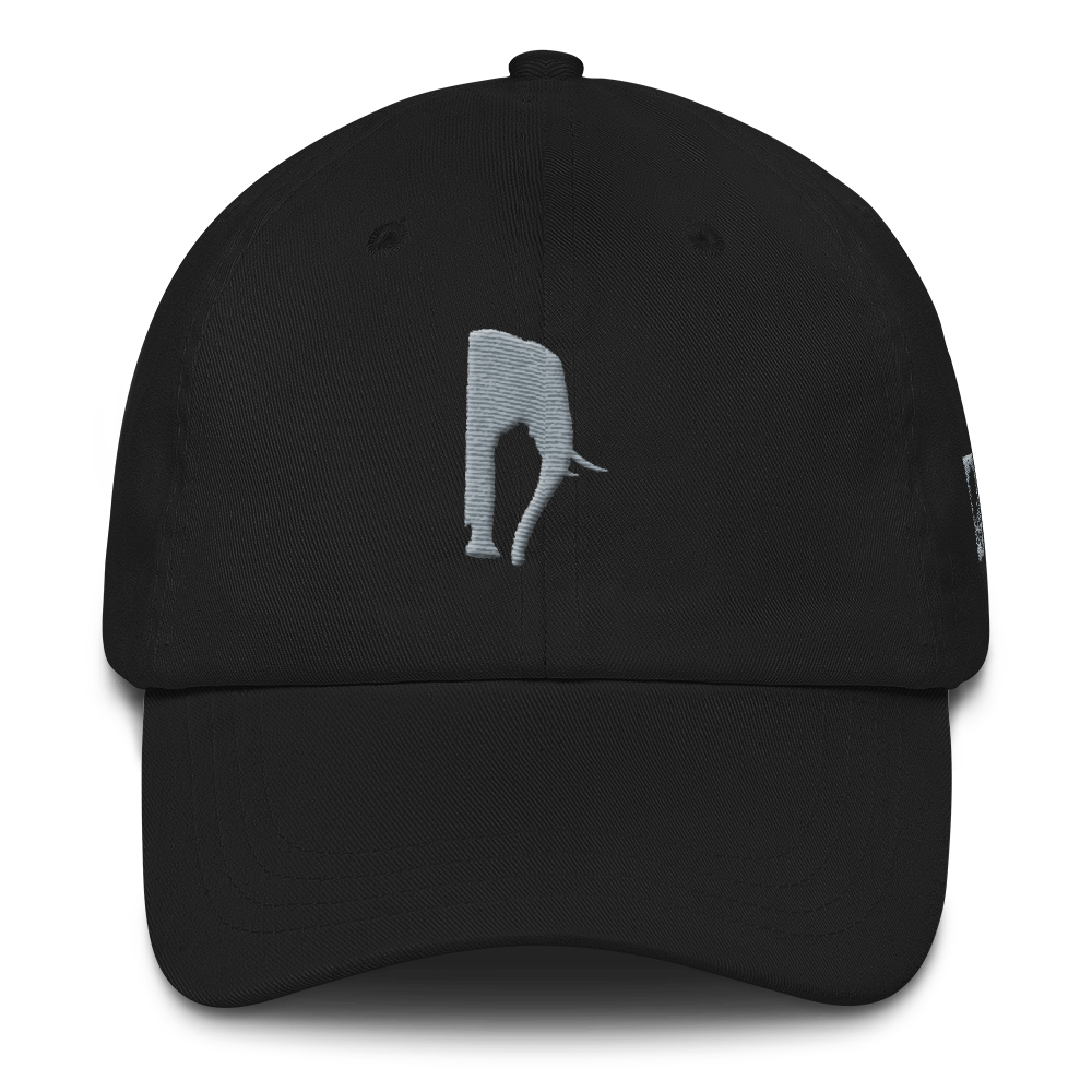 The Phant 3D puff Dad hat