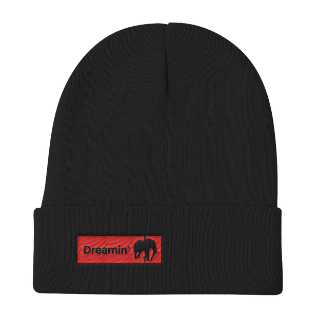 D' Long Knit Beanie