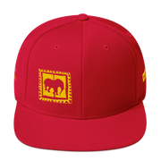 D' Logo Yllw/Red 3 yrs commemorative Cap
