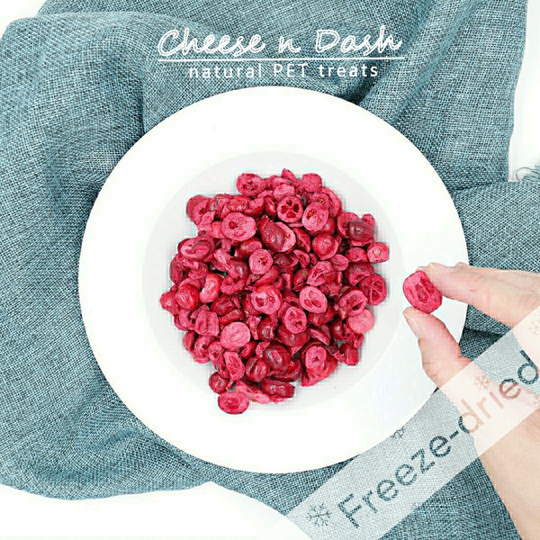 凍乾小紅莓 | Freeze Dried Cranberry