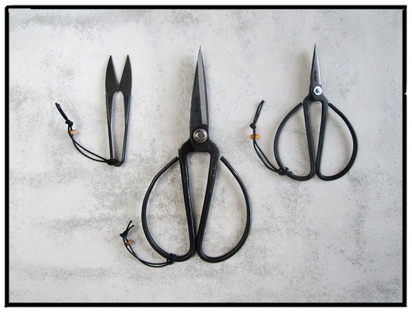 Bonsai Scissors