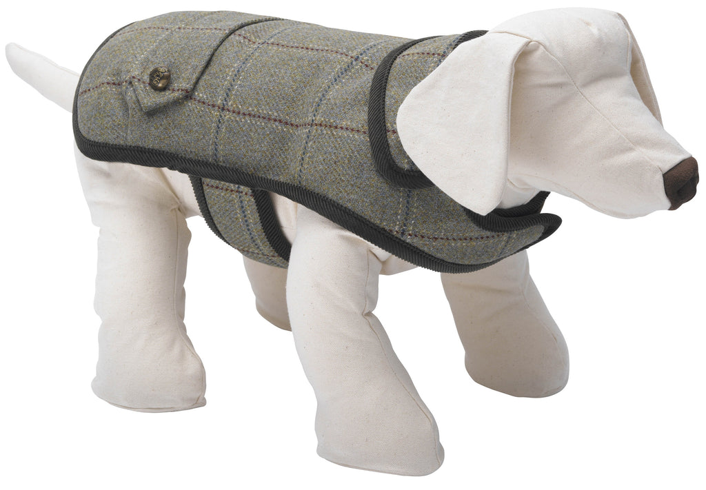 DIGBY TWEED DOG COAT