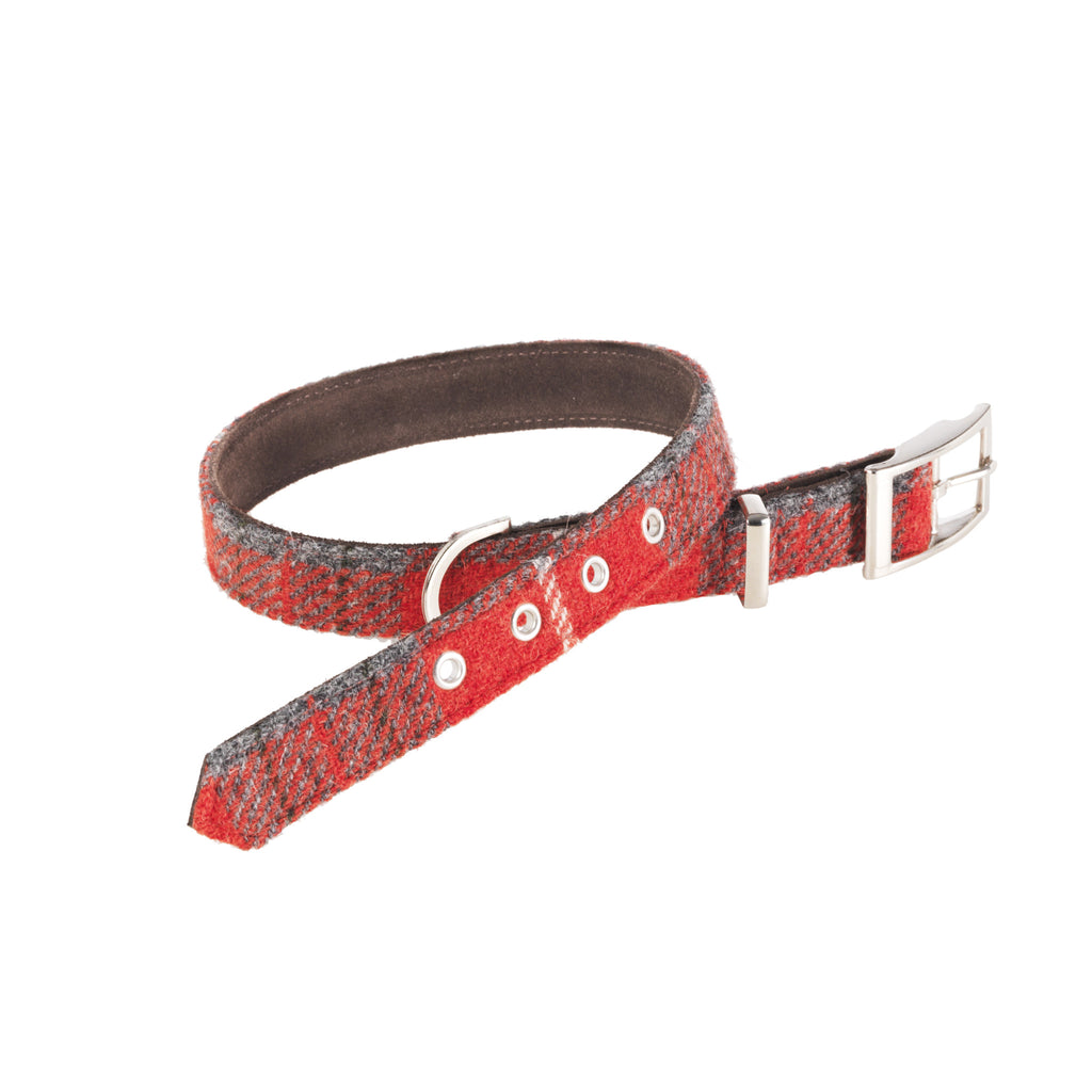 HOXTON TARTAN HARRIS TWEED DOG COLLAR