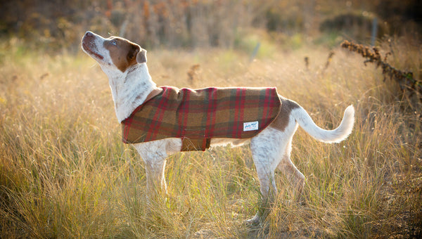 ARLO WATER-RESISTANT COAT