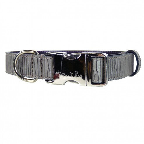 CONTEMPORARY DOG COLLAR